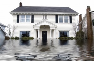 Flood Insurance Policy (PRP)